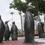 pinguine-by_Dietmar_Grummt_pixelio.de.jpg